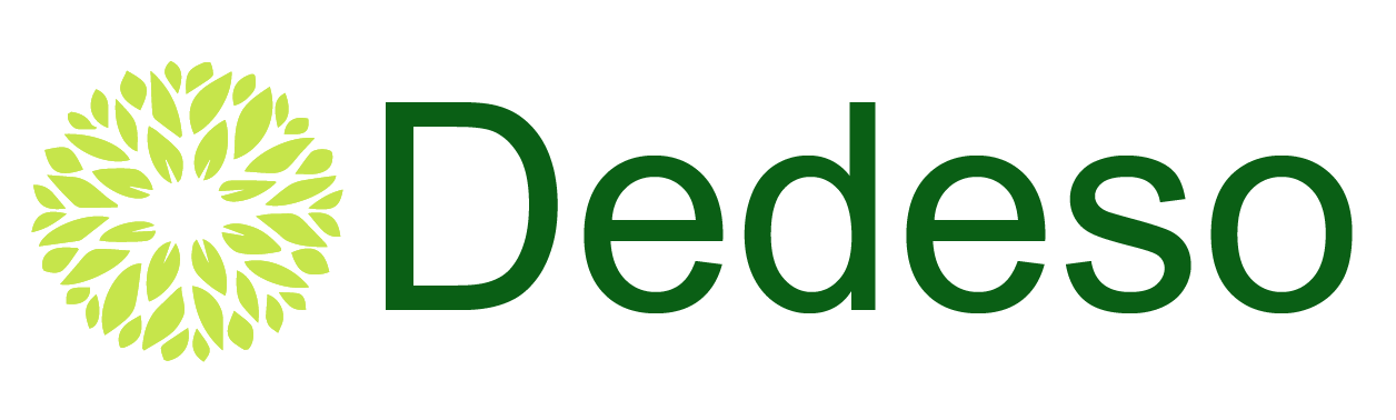 Dedeso Holdings Incorporated